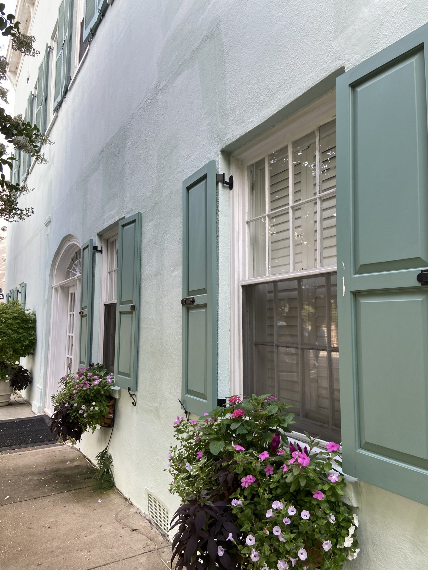 rainbow row charleston south carolina window box